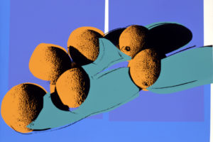 Space Fruits – Cantaloupes